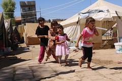 Flchtlinge in Erbil Kurdistan Irak 11.09.2014  IMG_7736 (Thomas Rossi Rassloff) Tags: camp is refugee iraq krieg east terror syria middle isis lager flchtling ixil krise turkmen terroristen kurden nahost islamisten kurdisch yeziden trkmenler turkmenen eziden salafisten jesiden zd
