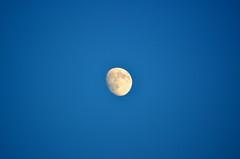"Moon Over The ""Mondoir"" [Kingston - 7 August 2014] (Doc. Ing.) Tags: summer sky moon ontario canada northamerica bancroft on 2014 supermoon"