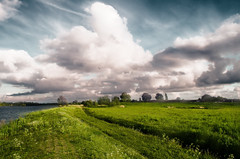 Painted By Light (Alfred Grupstra) Tags: flowers sky bird clouds grass green landscape light nikon trees water nature cloudsky ruralscene field cloudscape meadow outdoors scenics summer agriculture greencolor beautyinnature farm tree blue nonurbanscene weather