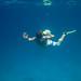 snorkeller IMG_0549bs