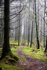 South Barrule (9) (cj_iom) Tags: blackandwhite mist nature canon walking photography walks scenic glen isleofman manx iom southbarrule ellanvannin canon1100d manxnationalglen manannanmaclirscloak manxbroth