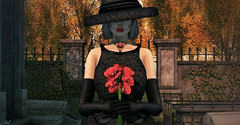 Adieu (♛ Baronne ♛) Tags: old flowers autumn shadow red black fall cemetery graveyard look hat fashion automne pose season french rouge sadness blog sad veil dress darkness mesh action charlotte lace tomb style blogger triste attitude funeral photograph secondlife chapeau poppies heels hosiery glam accessories bouquet chic gown mode pantyhose cimetiere tristesse tombe accessory thearcade gizza accessoire deuil thesecretstore the24square