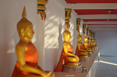 Buddhas. (FIVE S.P.) Tags: light sun sunlight thailand temple gold afternoon buddha thai wat buddhaimage      kamphaengphet