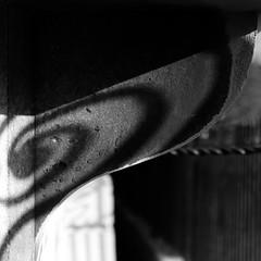 Butterfly (Andrew Malbon) Tags: butterfly shadows leica leicam9 m9 rangefinder swirls 50mm 50mmf2 summicron classical architecture universityofportsmouth building raisin monochrome blackwhite mono portsmouth portsmouthguildhall guildhall parkbuilding