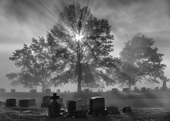 Autumn morning fog in cemetery (冬梦) Tags: outdoor fog sunshine morning autumn tombstones