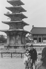 Pentax Film (wrpugsley) Tags: bw kentmere100 pentax southkorea blackandwhite buyeo