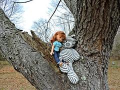 It Was A Good Day For Tree Climbing (marilyntunaitis) Tags: it was a good day for treeclimbing zag paolareinadoll stuffedanimals teddybear tree