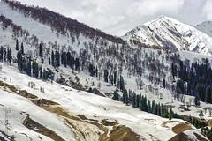 Snow 8 ... (Bijanfotografy) Tags: nikon nikond800 nikon180mm28afd nikon180mm28d kashmir jammukashmir jk sonamarg snow mountain cold winter landscape