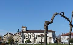 Sainte-Eulalie-en-Born, Landes (Marie-Hélène Cingal) Tags: france sudouest aquitaine nouvelleaquitaine landes 40
