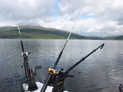Riggers@The Ready (salmoferox) Tags: fish tree water scotland boat highland warrior loch trout predator fishingboat cr lure browntrout ferox trolling catchandrelease catchrelease lurefishing feroxtrout feroxfishing warrior165 feroxtroutfishing trollingforferoxtrout trollingloch warriorboats