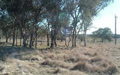 Polhill Road, Wellingrove NSW
