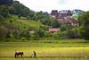 Plowing in Copsa Mare, Romania (Explore 6/23/2014) (doveoggi) Tags: horse field farm romania plow transylvania 5275 copsamare