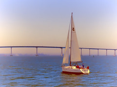 Gorgeous Day On The Bay (Artypixall) Tags: texture sailboat getty coronadobridge faa sandiegobay