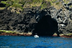 Sea Cave Under the Saddle Between Mt Eliza & North Head - Lord Howe Island Circumnavigation (Black Diamond Images) Tags: mountains island boat paradise australia cliffs nsw cave boattrip circumnavigation lordhoweisland seacave worldheritagearea thelastparadise circleislandboattour