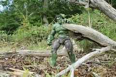 Hulk (rodstoybox) Tags: comics legends hulk marvel incredible avengers