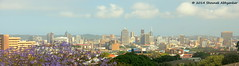 Durban, South Africa (Shounak Abhyankar) Tags: seattle toronto architecture nikon montreal cities cityscapes capetown kualalumpur dslr nightscapes durban d7000