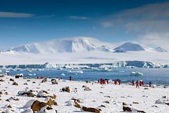 _MG_7188 (Charlie 2.0) Tags: snow ice wildlife antarctica iceberg peninsula ioffe lastmarathon
