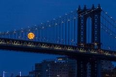 Supermoon rolling down the Manhattan Bridge into Brooklyn... (Barry Yanowitz) Tags: nyc newyorkcity bridge moon ny newyork brooklyn night downtown manhattan dumbo bridges clear manhattanbridge gothamist nycity 718 twobridges downunderthemanhattanbridgeoverpass perigeemoon supermoon