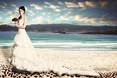 Ocean Breeze (J. Zaring Photo) Tags: wedding roses beach composition bride petals sand bridal comp beachbride