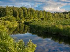 Ryonanjoen maisemia (mikkovares) Tags: finland olympus omd em5 kiuruvesi