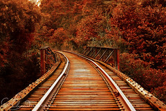 Long Way Home (AlyKPhoto) Tags: old autumn red fall abandoned train canon outside country rail railway traintrack t2i