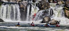 Racing Down the Great Falls