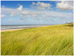 Passed glory: Bergen aan Zee (H. Bos) Tags: sea beach nature strand coast village dunes dune natuur zee coastline bergen alkmaar duinen dorp noordholland fujifinepix duin kust bergenaanzee kustlijn finepixs5700