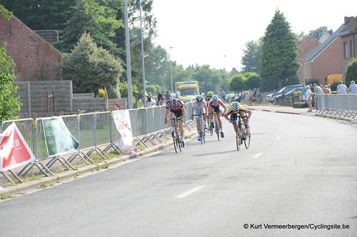 Geel Oosterlo  (351)