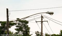 Illinois Streetlights (Doctor Christopher) Tags: streetlights illinoisstreetlights americanelectricitt25