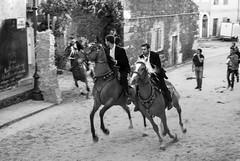 GIAVE S'ARDIA 5 (muro12lab) Tags: sardegna italy horse nikon mediterranean mediterraneo italia sardinia tradition festa cavalli cultura 2014 tradizioni d80 ardia giave
