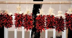 santa fe ristra _ new mexico _ v4 art crop (meg99az) Tags: chile newmexico santafe chili ristra artvariation