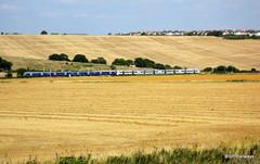 Class 357 Electrostar in Essex (SP Railways) Tags: uk blue white field wheat harvest rail trains national emu british express railways hadleigh leighonsea c2c electrostar class357