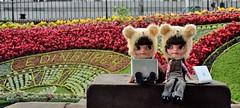 Ao ar livre, aproveitando a wi-fi grátis nas ruas e parques escoceses