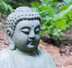 Buddah (D_Cline) Tags: green nature statue garden landscape happy leaf prayer religion monk zen fengshui wisdom enlightenment ornamental hindu dharma buddah goodluck contentment chineseculture generosity gardendecor beautyinnature kindheartedness