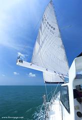Sail XOKA1715s (forum.linvoyage.com) Tags: yacht sail good wind full drive phuket andaman sea indian ocean speed boat blue sky wave           phuketian phuketphotographernet forumlinvoyagecom httpforumlinvoyagecom outdoor samui thailand krabi pattaya