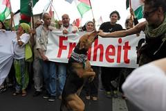 BERLIN FR GAZA, August 2014 (bsdphoto) Tags: berlin demo deutschland israel protest krieg demonstration hund transparent deu palstina gaza mnnchen palstinenser grosdemonstration freiheitfrpalstina