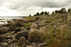 Sweden 2014 (SS) Tags: trees light sea wild summer sky texture nature colors clouds dark landscape photography coast rocks flickr mood angle pentax sweden stones shoreline scenic july greens tones k5 2014 aplacetobe dynamicclouds ss