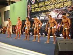 pfbb2010-63-