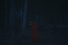 Into the Woods (Gabriel Isak) Tags: wood light red tree contrast dark hand forrest bokeh fineart creepy imagination cloak lantern conceptual cinematography anonymous darkart conceptualart
