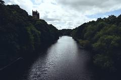 Durham (5) (hmak0) Tags: uk travel green castle nature forest 50mm nikon durham britain explore d5100