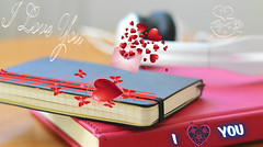 Geeks In Love (Sedona Clearing House) Tags: love nerd moleskine hearts office geek quote valentine romance iloveyou
