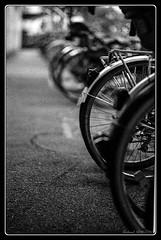 Park Bike (Maestr!0_0!) Tags: black film nikon noir kodak tmax 400 f5 blanc whie argentique