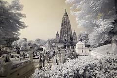 India_0173
