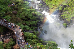 Iguazu, Argentina (Mick LEVY) Tags: nature water argentina argentine eau path falls iguazu chemin chutes caminando provincedemisiones