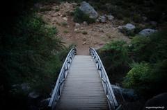 Pasarela (miguelangelmolp) Tags: bridge green nikon murcia pasarela castril d5100