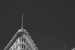 The Phelan Building on Grant (JM L) Tags: phelanbuilding sanfrancisco fondsdécran hintergrund fondodepantalla ડેસ્કટોપવોલપેપર 桌面壁纸 デスクトップの壁紙 desukutoppunokabegami обоидлярабочегостола adobecameraraw sf