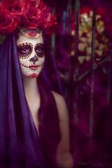 The Lover (Silke Klingelhfer) Tags: roses usa halloween cemetery dayofthedead skeleton skull model bars louisiana gate neworleans ghost makeup stainedglass creepy diadelosmuertos lover retouch sugarskull metairie lakelawn marahkayehanks
