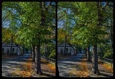 Burgstraße, Mylau 3-D / CrossView / Stereoscopy / DRi