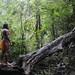 'Percibí el llanto y agonía de vestigios sepultados por una civilizada ignorancia'.. . The embera man and the tree trunk / comunidad indígena emberá, Panamá.. . II PREMIO EN CONCURSO DE FOTOGRAFÍA FOREST FINANCE 2011, PANAMÁ.. . II AWARD IN PHOTO CONTEST FOREST FINANCE 2011, PANAMA.. . EDICIÓN LIMITADA / LIMITED EDITION (10)