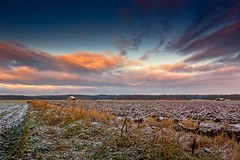 Frost On The Winter Fields (k009034) Tags: 500px winter copy space finland matkaniva oulainen outdoors tranquil scene agriculture barns clouds coldness countryside farming fields frost nature no people rural seasons sky snow teamcanon